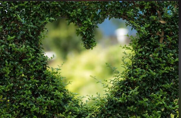 Poem: Is this Love? ❤️