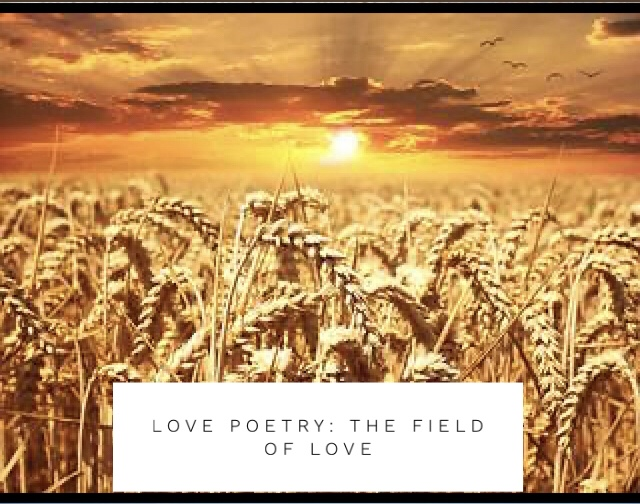 Love Poetry: The Field of Love ❤️