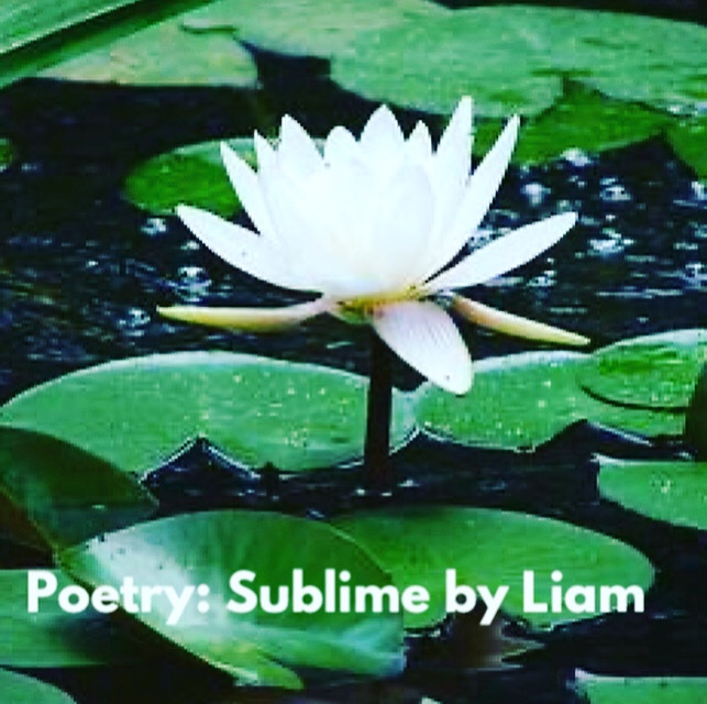 Poetry: Sublime