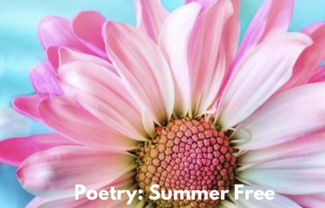 Poetry: Summer Free