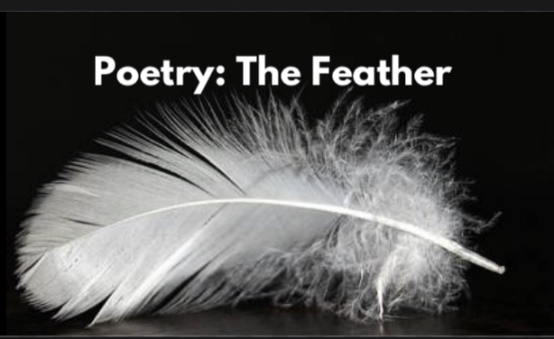 Poetry: The Feather