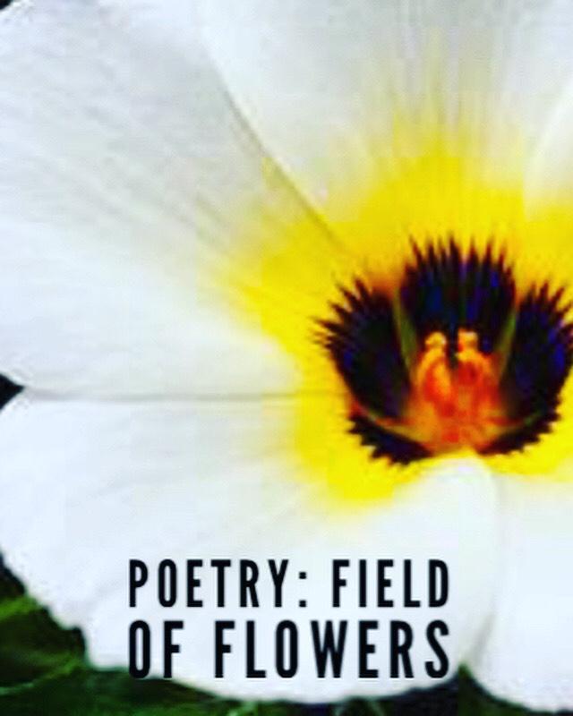 Poetry: Field of Flowers