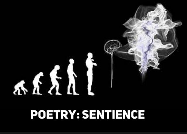 Poetry: Sentience