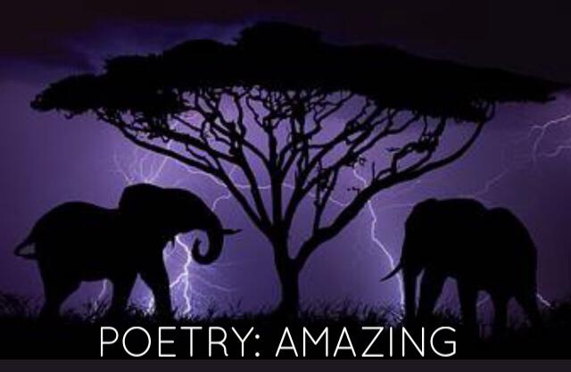 Poetry: Amazing