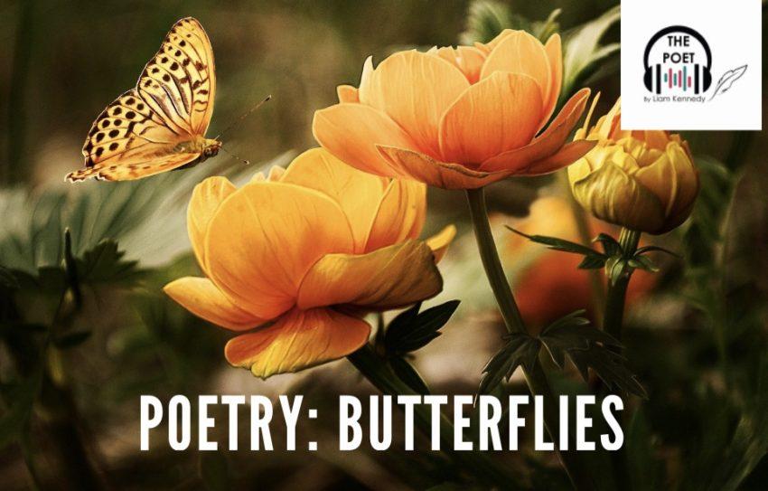 Poetry: Butterflies