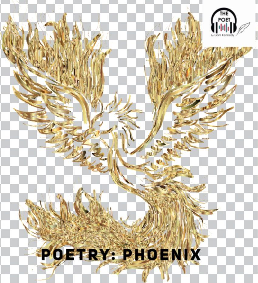 Poetry: Phoenix